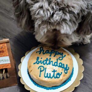 Birthday-Cake-Blanchard-Co-Gibsonville-NC-27249